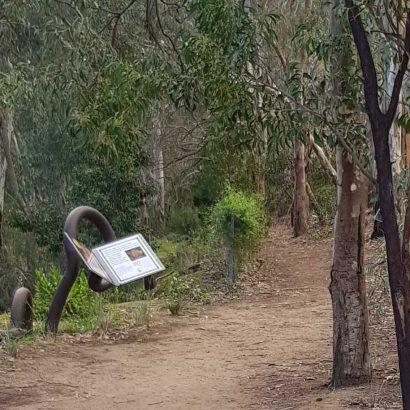 Bunyip Trail, children's trail in Bonython Park/Tulya Wardli