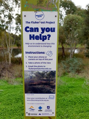 Citizen science project in Kaurna Park Wetlands
