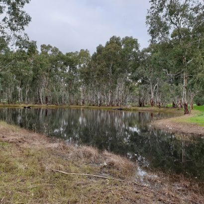 Kaurna Park Wetlands boundary loop, Burton