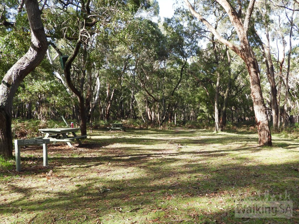 Picnic area with tables, just a short walk into Telford Scrub Conservation Park