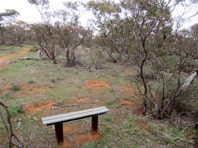 Seating along the way on the walking trail that winds through TP Bellchambers Reserve