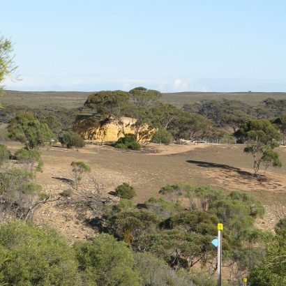 Shell Hill Reserve walking trails (between Mannum and Swan Reach)