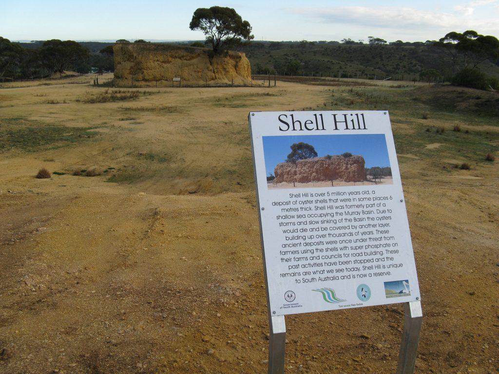 Shell Hill is a deposit of oyster shells that were in some places 6 metres thick. At over 5 million years old, Shell Hill is unique to South Australia, and the hills was formerly part of a shallow sea occupying the Murray Basin. Due to storms and slow sinking of the Basin the oysters would die and be covered bu another layer, building up over thousands of years.