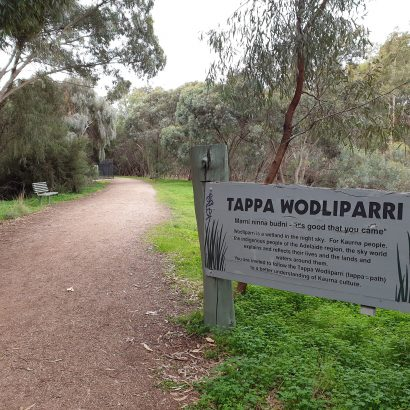 Wodliparri Trail, Kaurna Park Wetlands, Burton