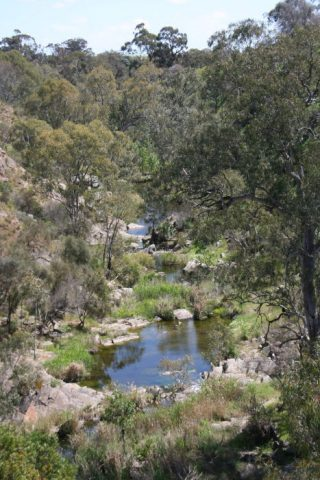 """The North Para has cut down to bedrock through its own sediments in Chatterton Gorge. Photo courtesy of the <a href=""""https://www.walkingtrailssupportgroup.org.au/"""">Walking Trails Support Group</a>"""