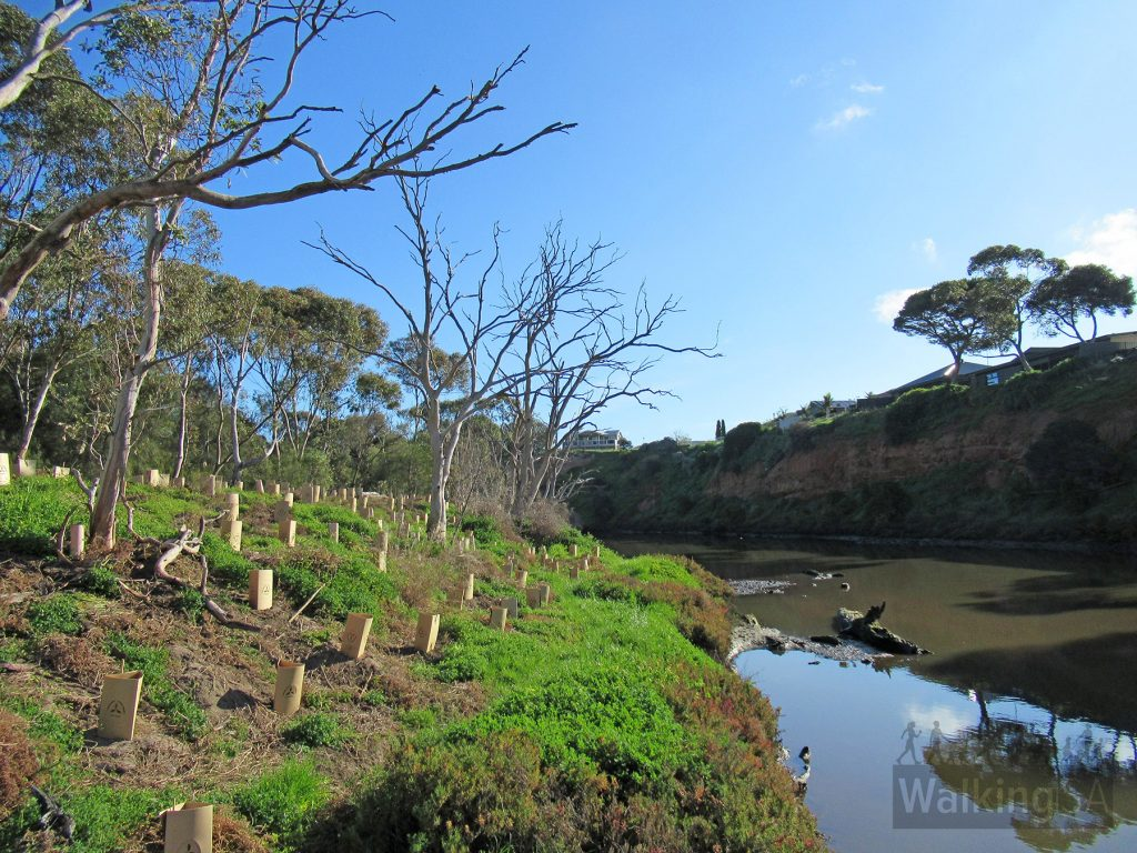 Jared Park, with the high cliffs on the outside of the horseshoe shape of the Onkaparinga River