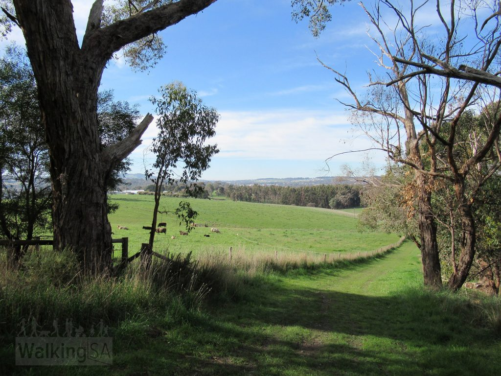 View of rural life from the perimeter fire track in the popular northern section of Totness Recreation Park