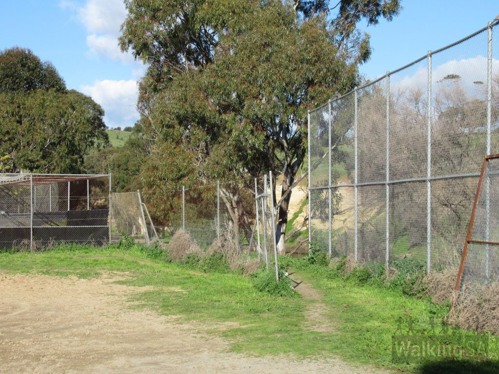 The path continues behind the cricket nets to join with Paringa Parade