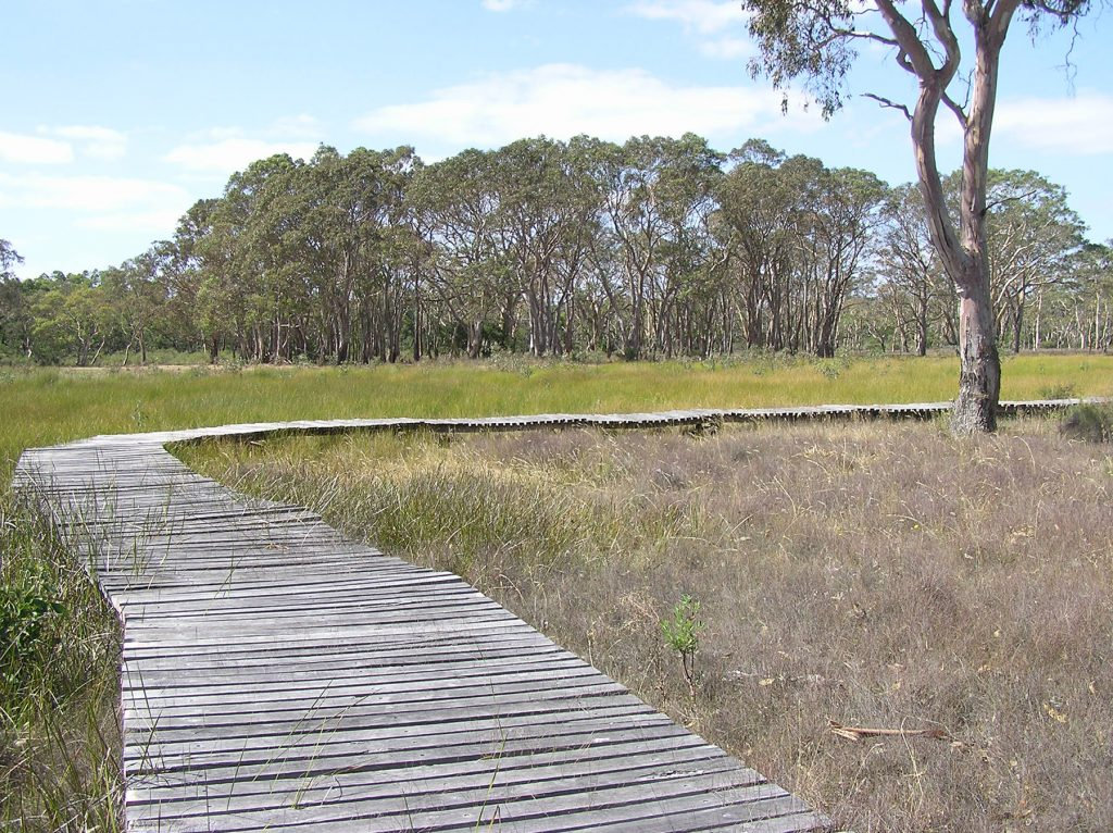 Boardwalk on the Nature Trail in Penola Conservation Park