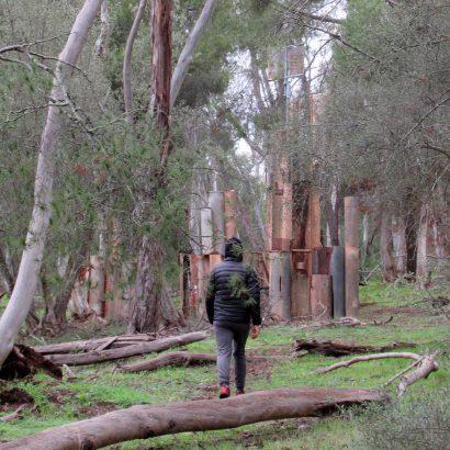 Sculpture Walk, Bundaleer Forest