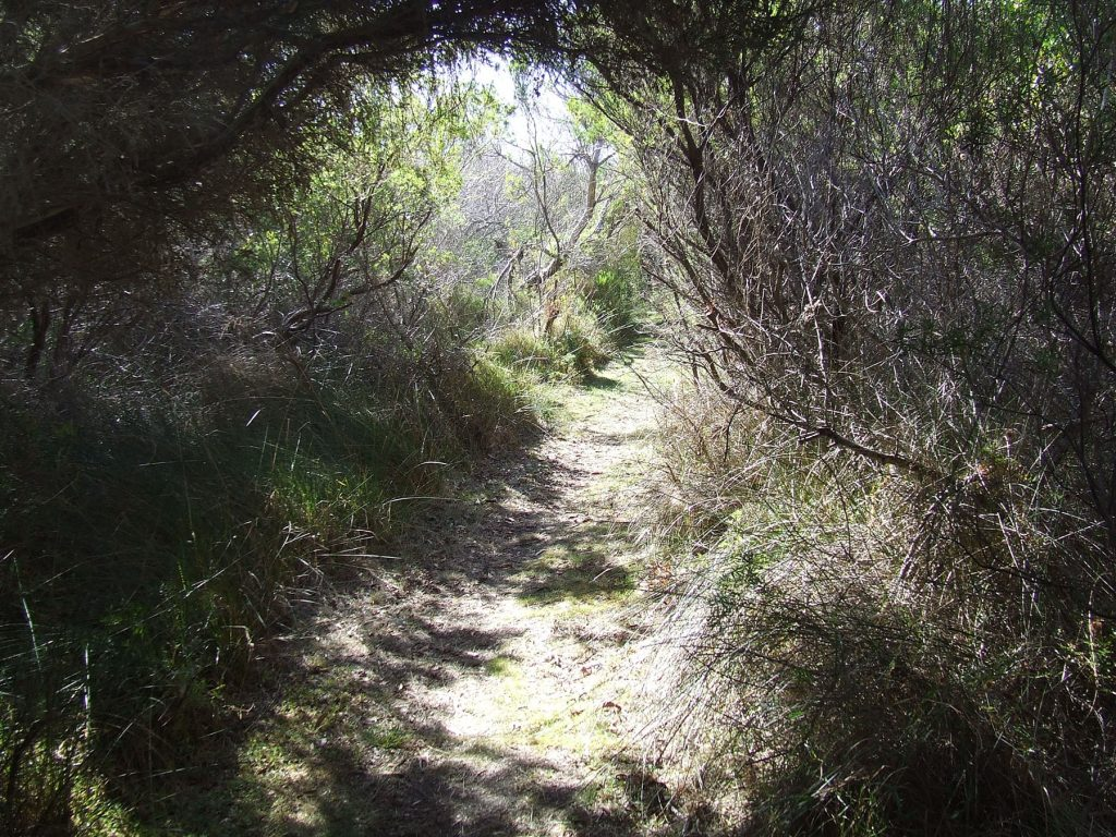 The Jack & Hilda McArthur Walk walking trail