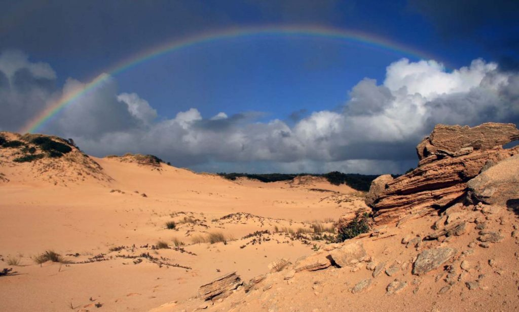 The sand dunes of Canunda National Park