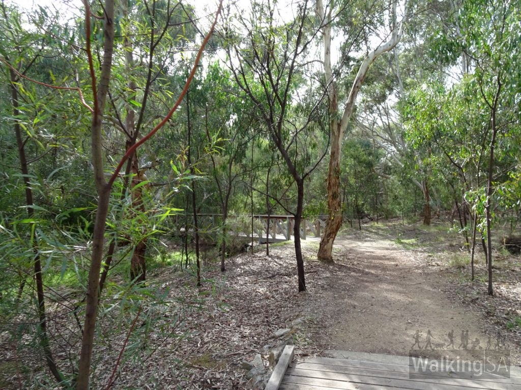 The trails in the southern section of Minkarra Park are good quality dirt track, suitable for baby strollers, some board walks.