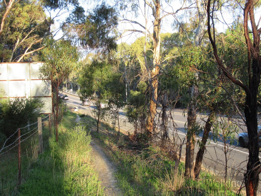 The two sections of park are connected by an informal narrow, dirt track, with slight incline that lies between the road and the Flagstaff Hill golf course