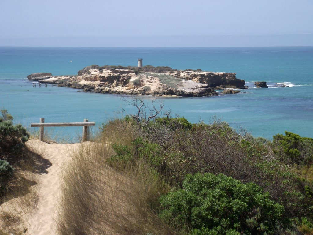 The view to Penguin Island, with the ruins of Penguin Island Lighthouse visible