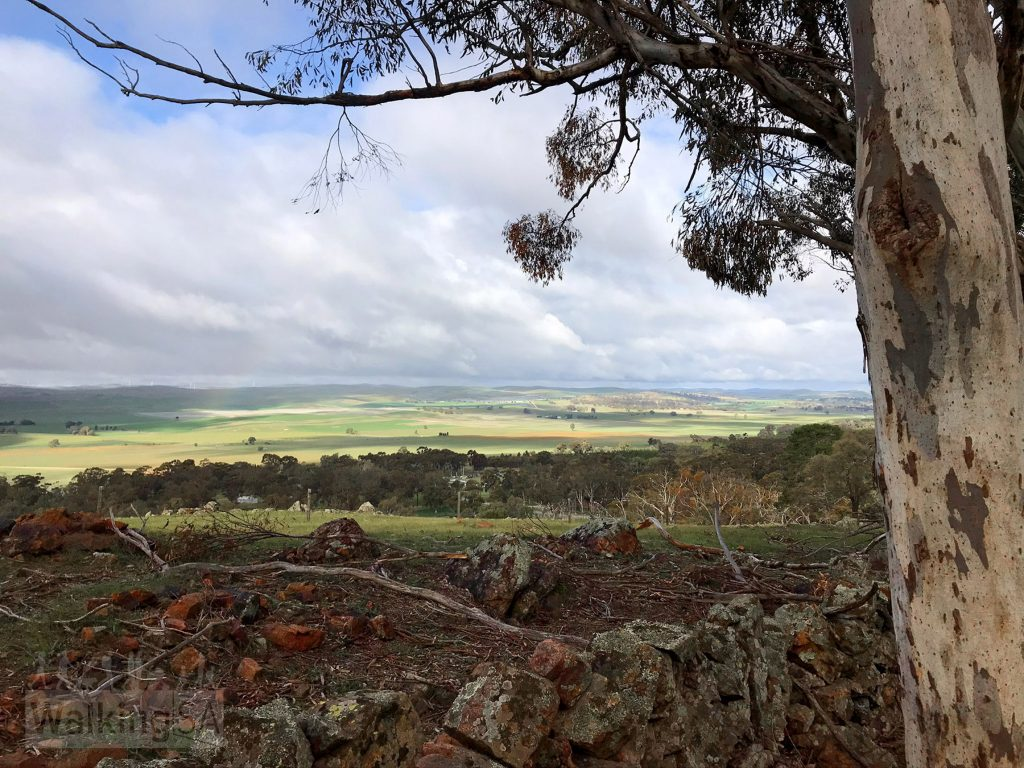 Views from the 1800s stone wall over Bundaleer Valley