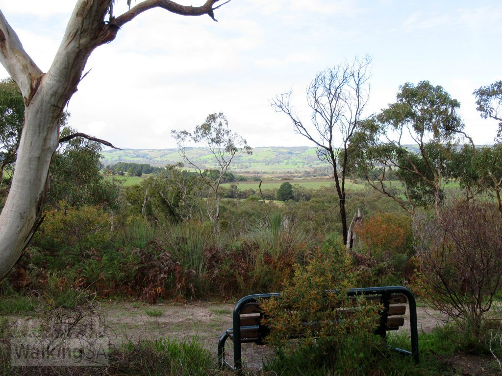 You can sit on one of the park benches and admire the view across the vineyards to the Willunga ranges