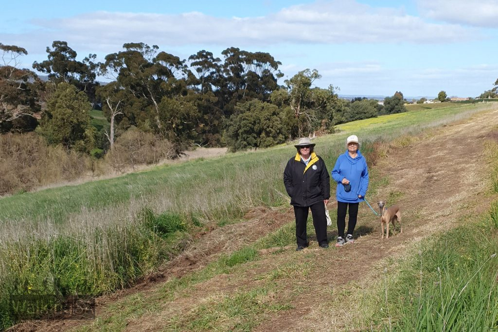 The wide cleared tracks of the Glenthorne Loop Trail are suitable for dog walking