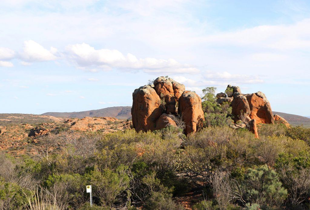 Granite outcrops on the Cleland Walking Trail