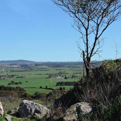 Callington Spur Trail, Lavender Federation Trail
