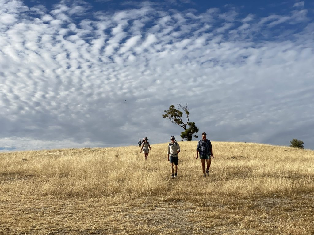 About 36% of the trail for walkers traverses private property and road reserves