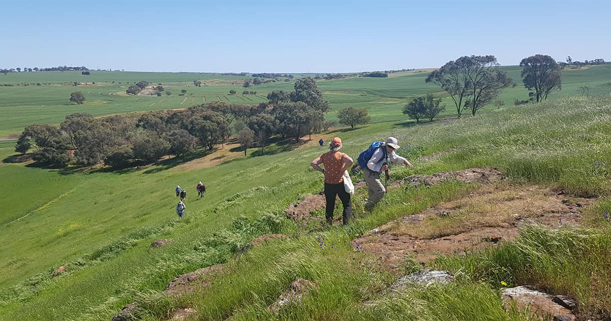 Gawler Bushwalkers on a hike