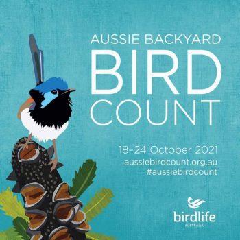 Aussie Backyard Bird Count 2021