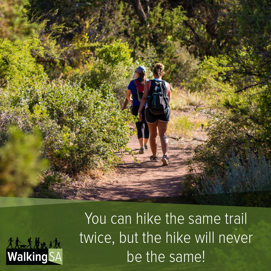 social media tile Square 1080px x 1080px: You can hike the same trail twice, but the hike will never be the same.
