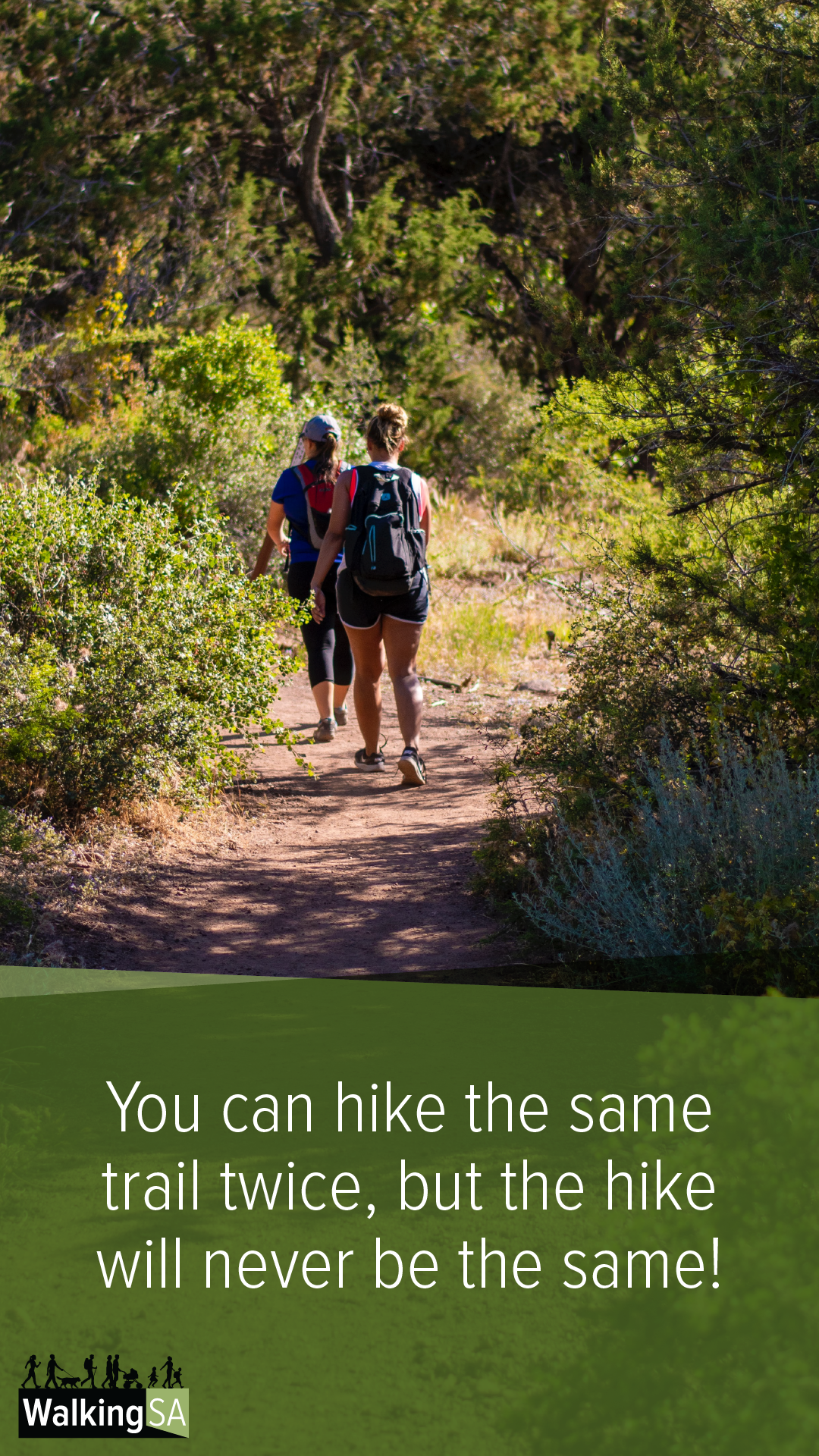 social media tile Square 1080px x 1900px: You can hike the same trail twice, but the hike will never be the same.