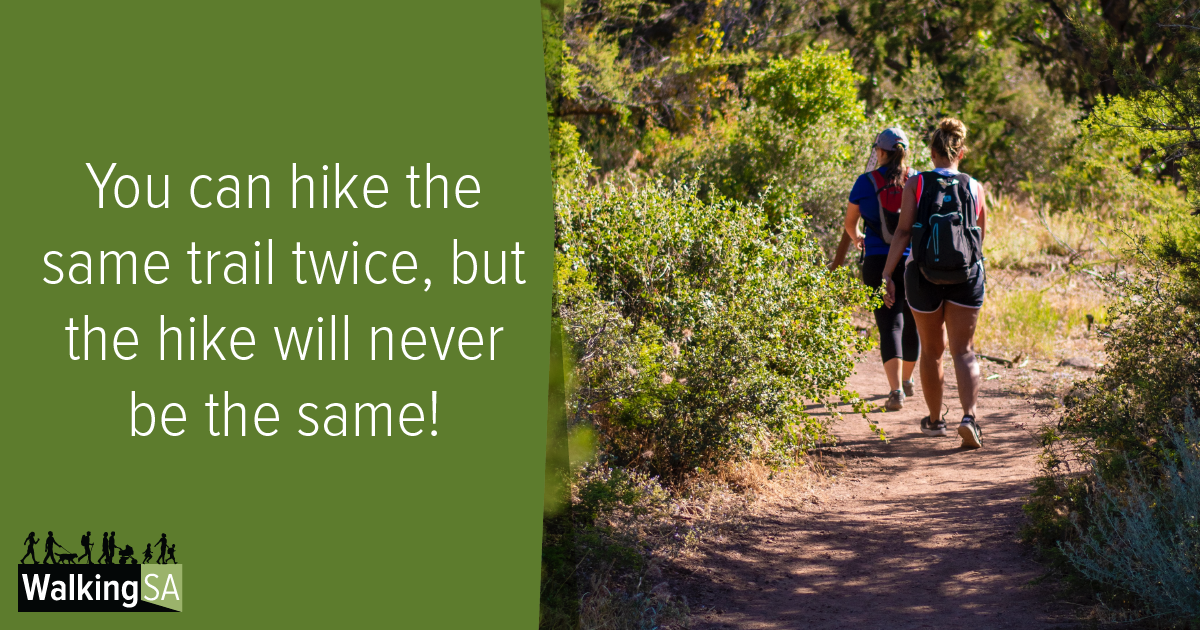 social media tile Rectangle 1200px x 630px: You can hike the same trail twice, but the hike will never be the same.