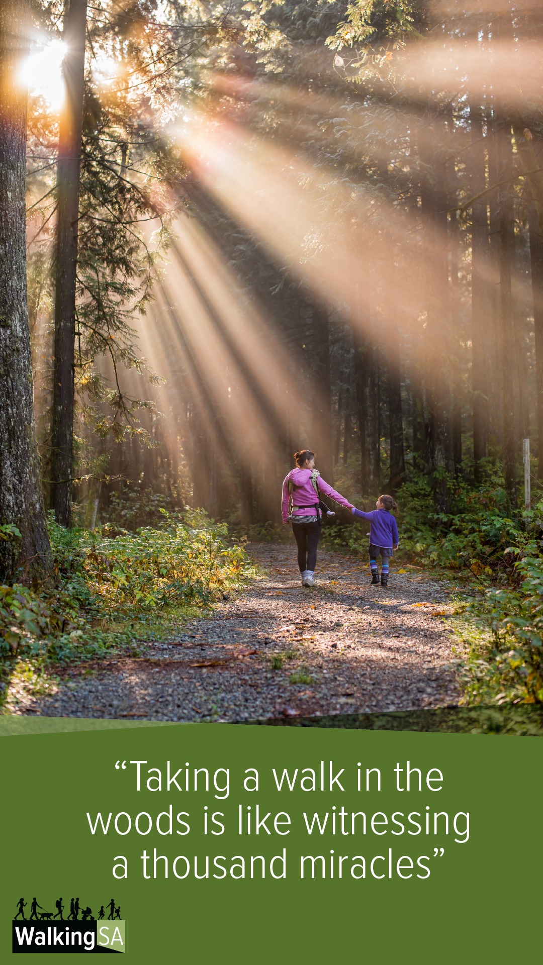 """social media tile Square 1080px x 1900px: """"Taking a walk in the woods is like witnessing a thousand miracles"""""""
