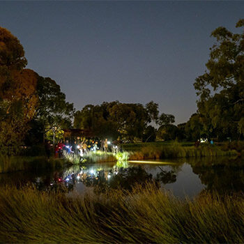 Oaklands Wetland – Nature by Night – Nature Festival